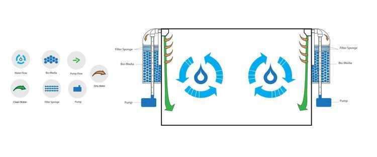 pulse160filtrationdiagram