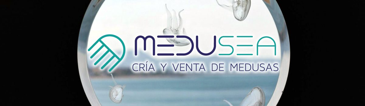 Comienzo de Medusea